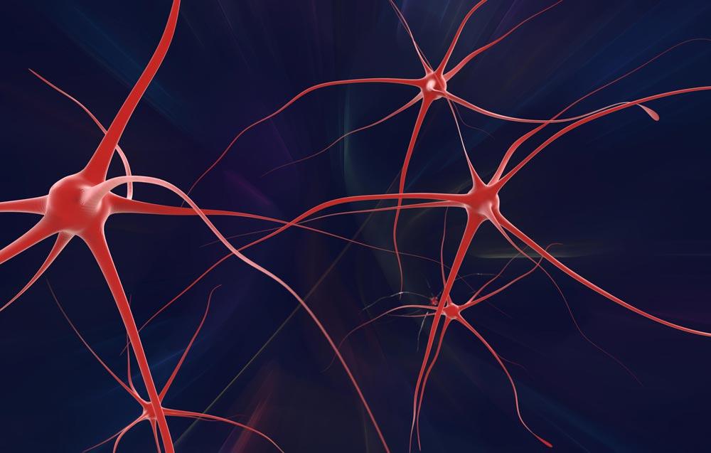 Geriatria, Neurologia e Psiquiatria: três especialidades à serviço do idoso